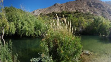 camping ganimedes, cochiguaz, valle del elqui