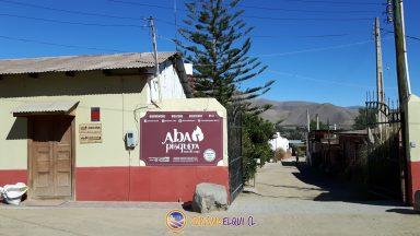 Pisquera Aba, vicuña, Valle del Elqui