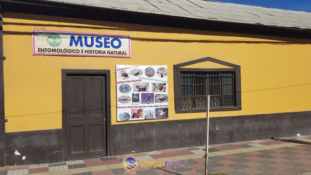 museo entomologico vicuna valle del elqui