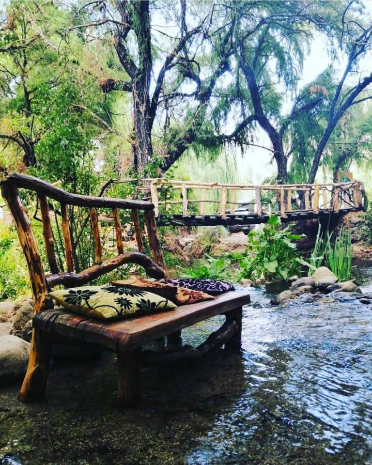 el bosque horcon restaurante valle del elqui 768x960