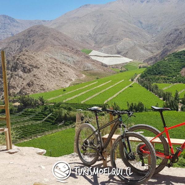 bajada bicicleta valle del elqui vicuna 2