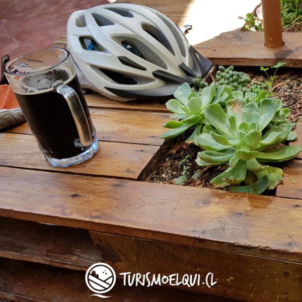 bajada bicicleta valle del elqui vicuna 5
